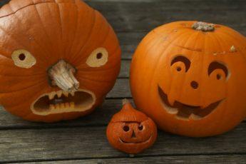 EinfachSchweden Halloween Schweden Kürbis