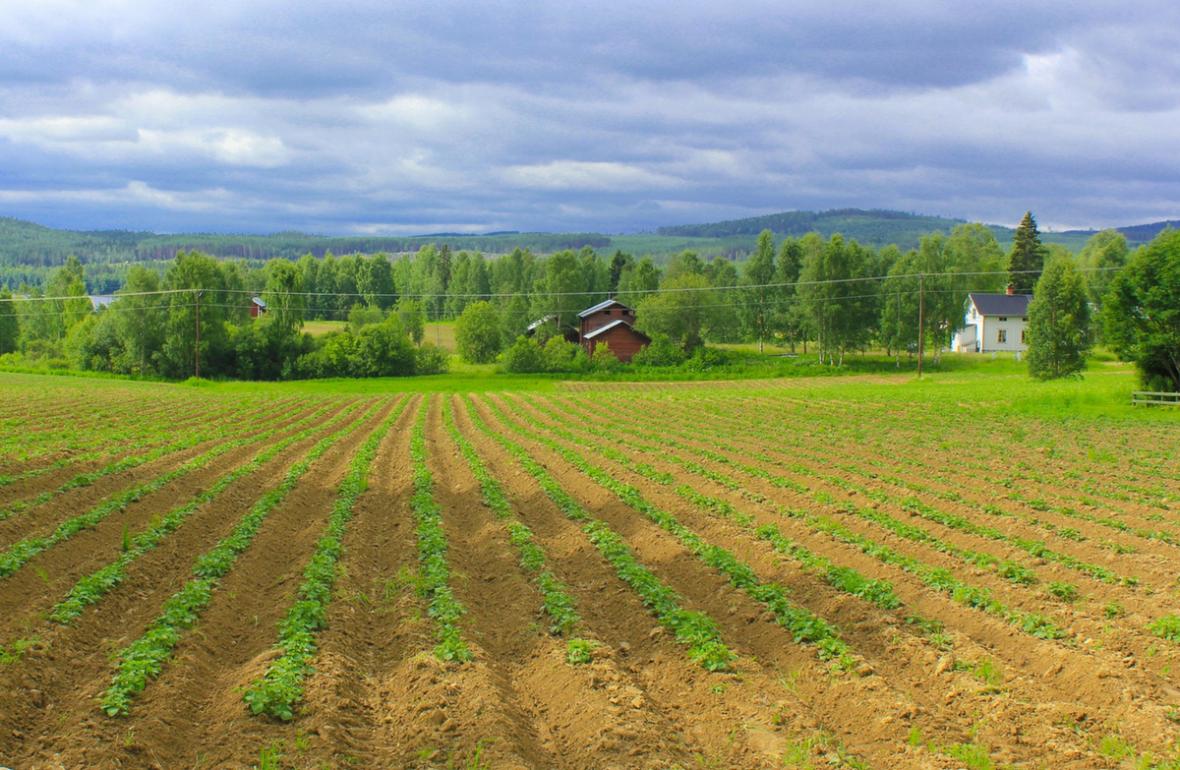 Hälsingland Landschaft Provinz Schweden EinfachSchweden