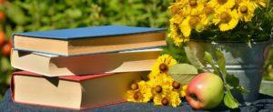 Buch Bücher Sonne Blumen Apfel