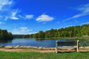 Natur Wald See Bank blauer Himmel Wolken