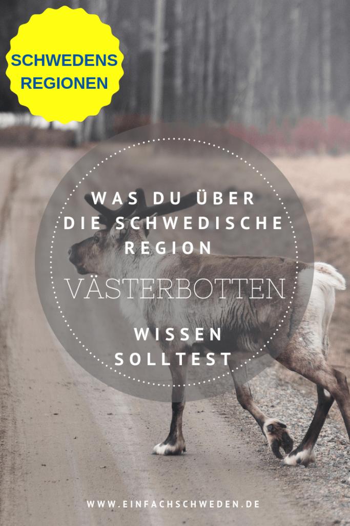 Västerbotten ist eine historische Landschaft in Schweden, die zu Norrland gehört. Neben viel Wald hat Västerbotten aber auch Käse und Gold zu bieten. #einfachschweden #schweden #västerbotten #urlaubinschweden #schwedenreise