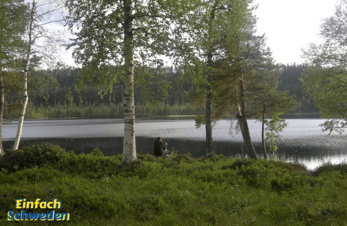 Västerbotten Landschaft Schweden Norrland See Birken Wald