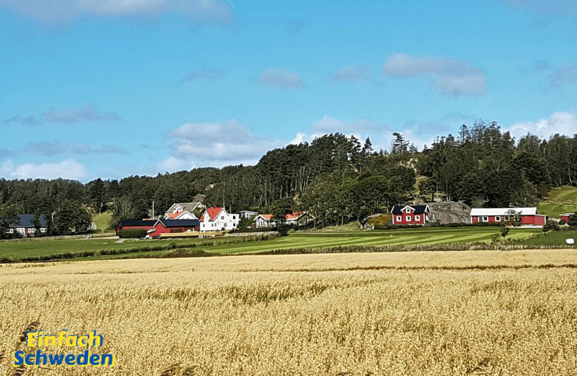 Schweden Urlaub Reise häufige Fragen