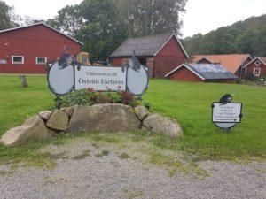 Ööströ Schaffarm Schweden