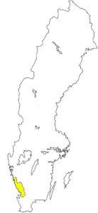Halland Silouette Schweden Landschaft