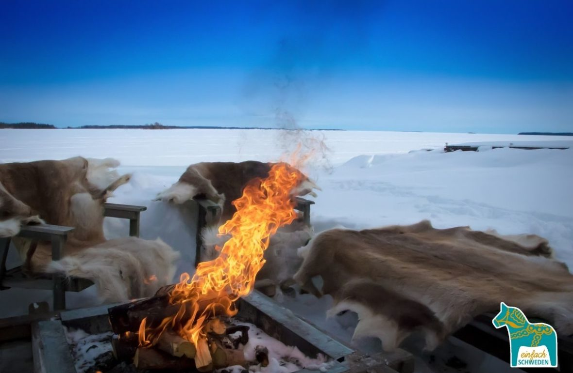 Norrbotten Schweden Landschaft Norrland Feuer Eis Schnee Winter Rentier Fell