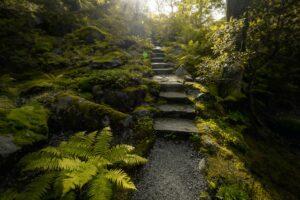 Göteborg Schweden Botanischer Garten Park Pflanzen